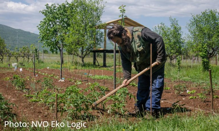 In Montenegro urban agriculture projects are blossoming during the pandemic