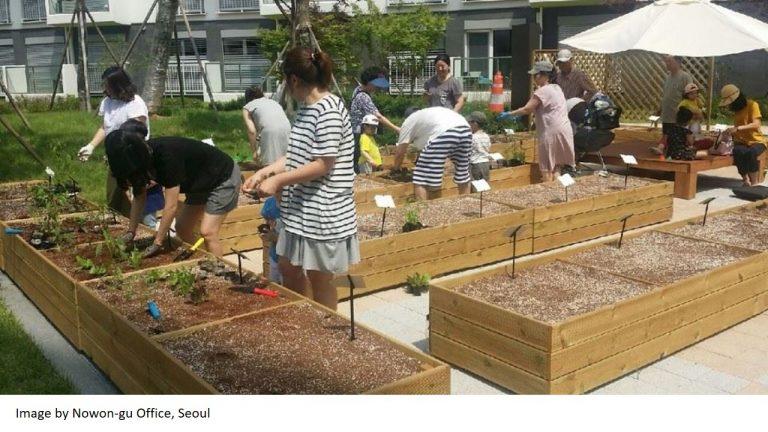 Cultivation amidst Urbanization in Seoul